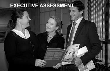 Executive Assessment